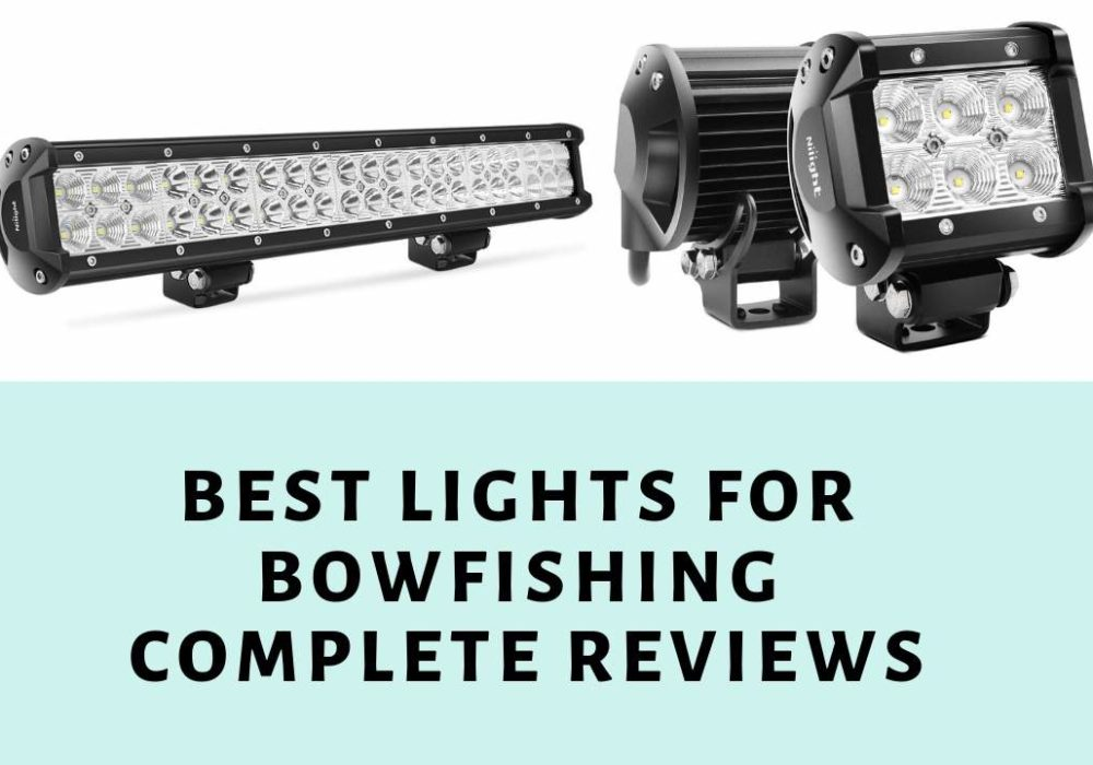 Best Lights for Bowfishing