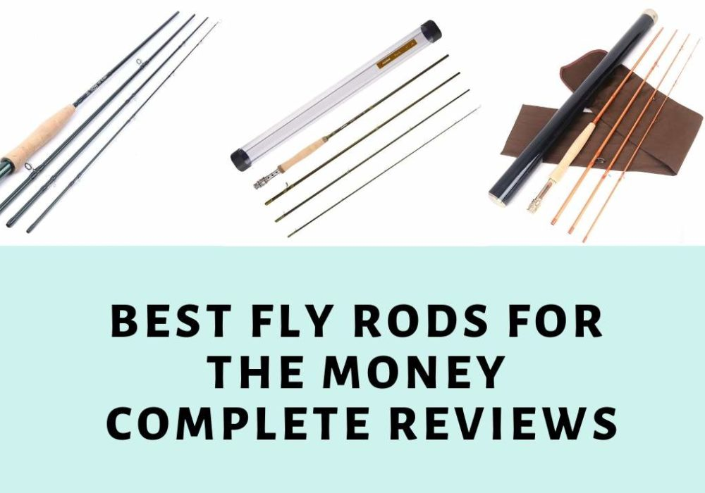 Best Fly Rods for the Money